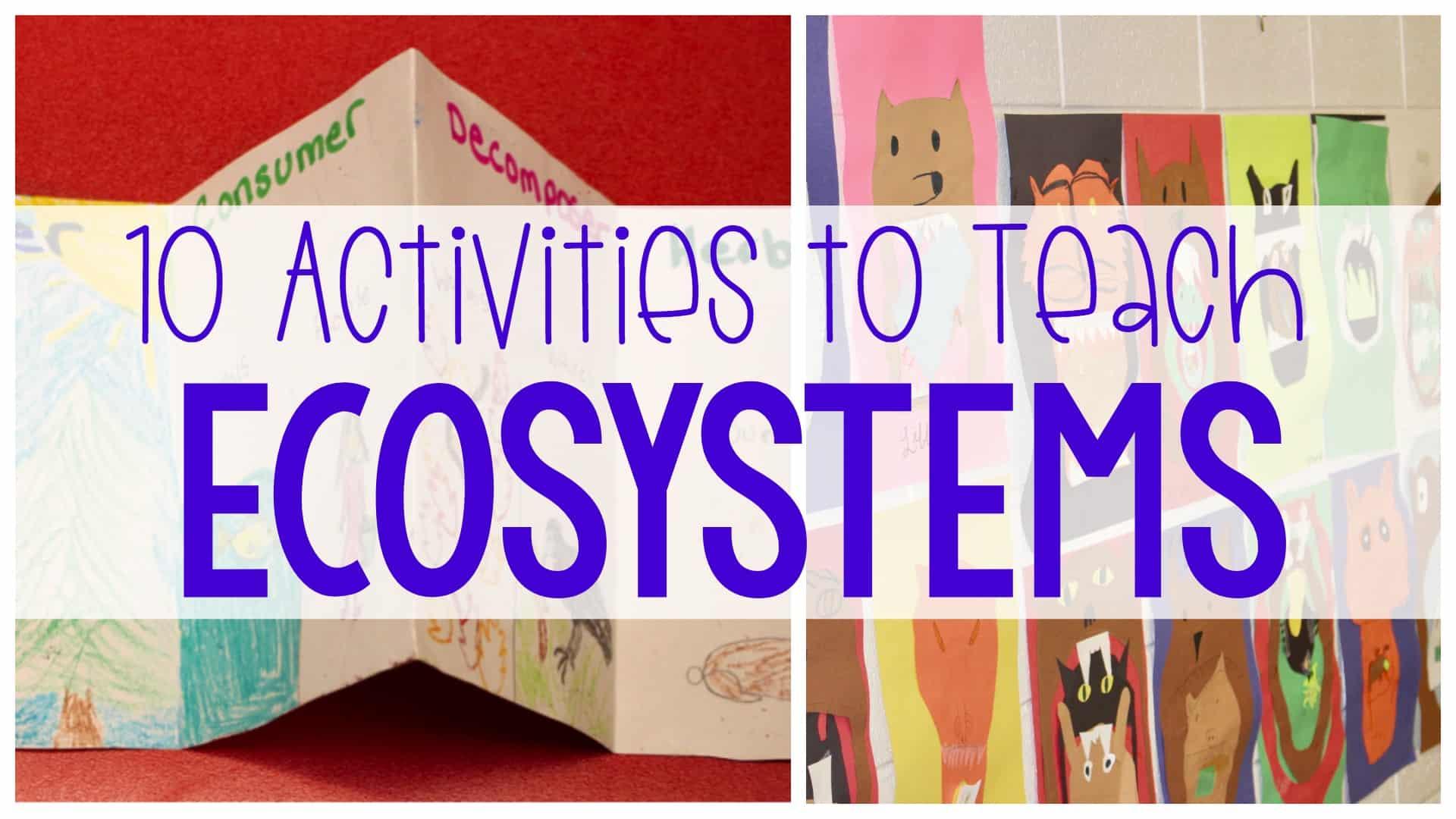 10 Activities to Teach Ecosystems Heading