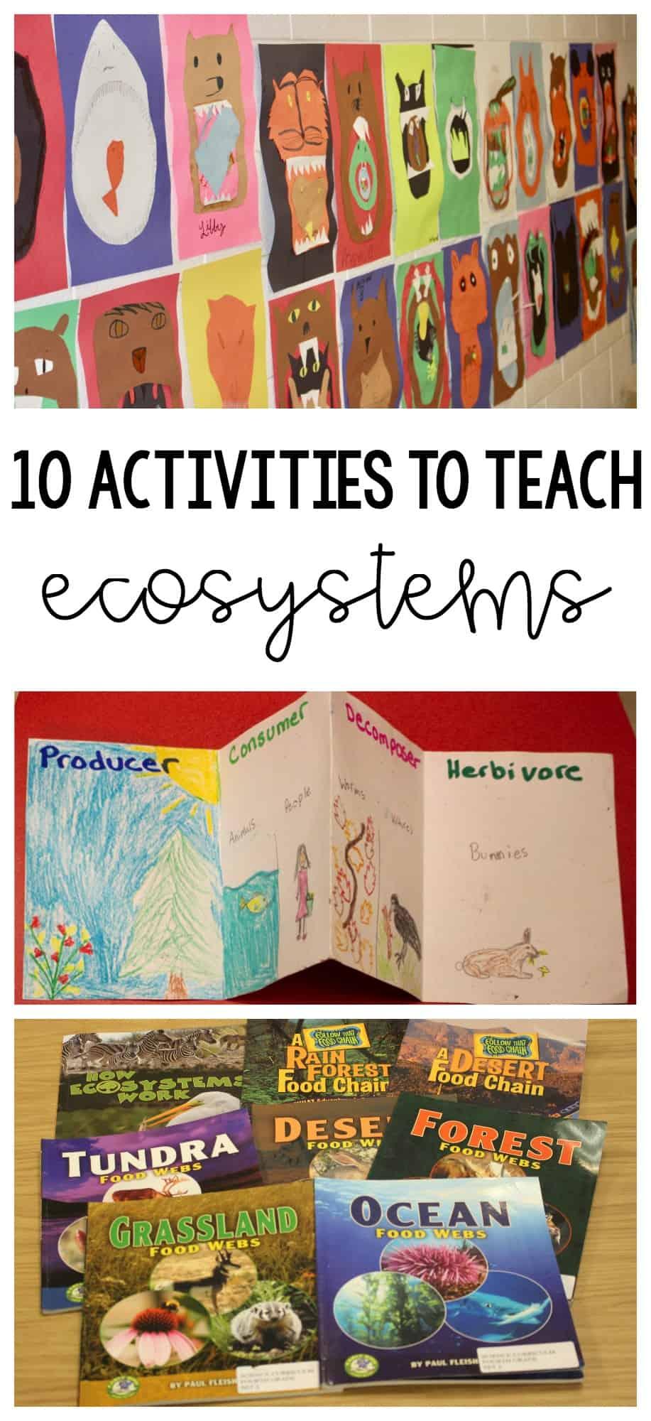 10 Activities To Teach Ecosystems Ashleighs Education Journey