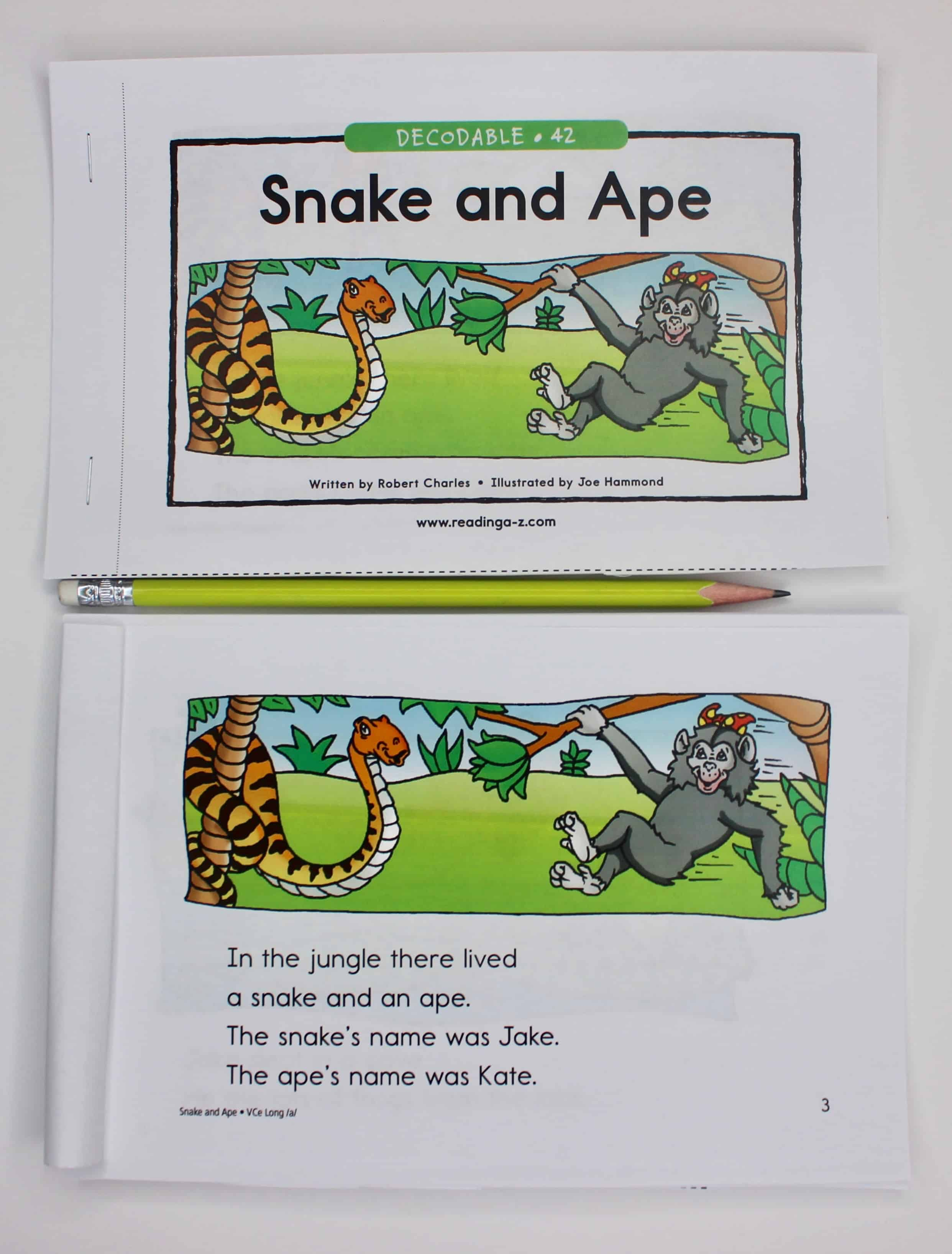Reading A-Z book for reading groups